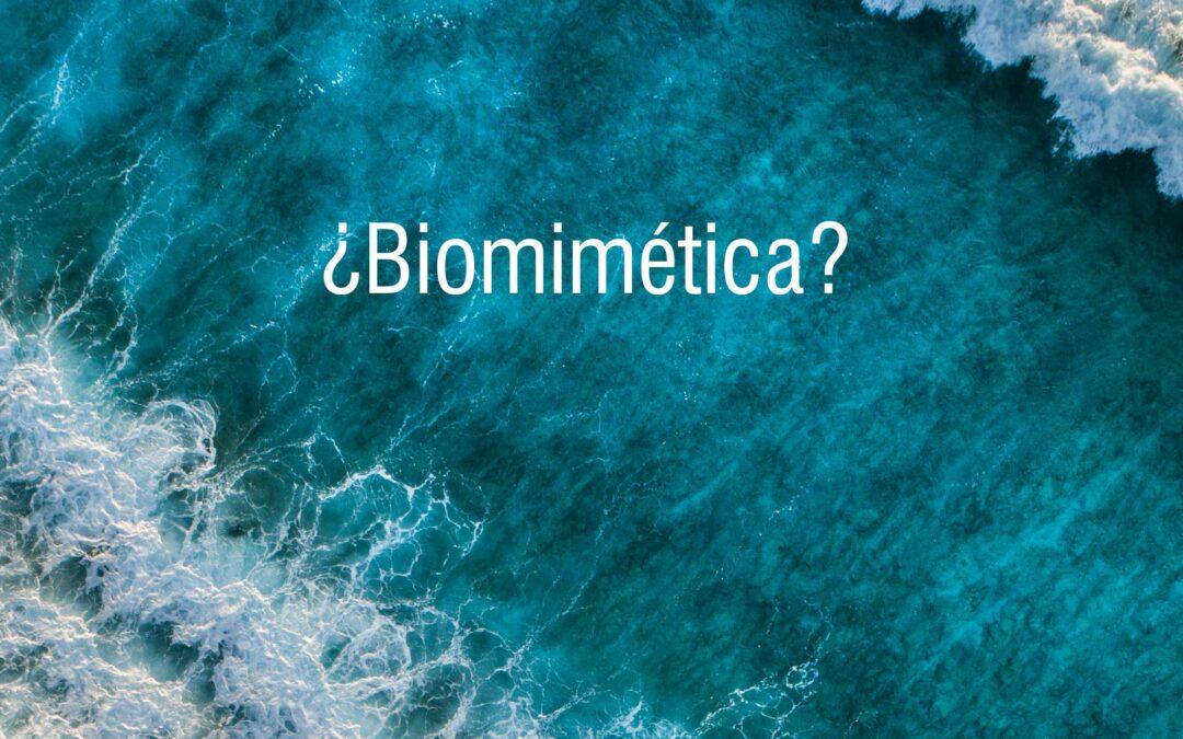 """Vídeo """"¿Qué es la Biomímesis?"""""""