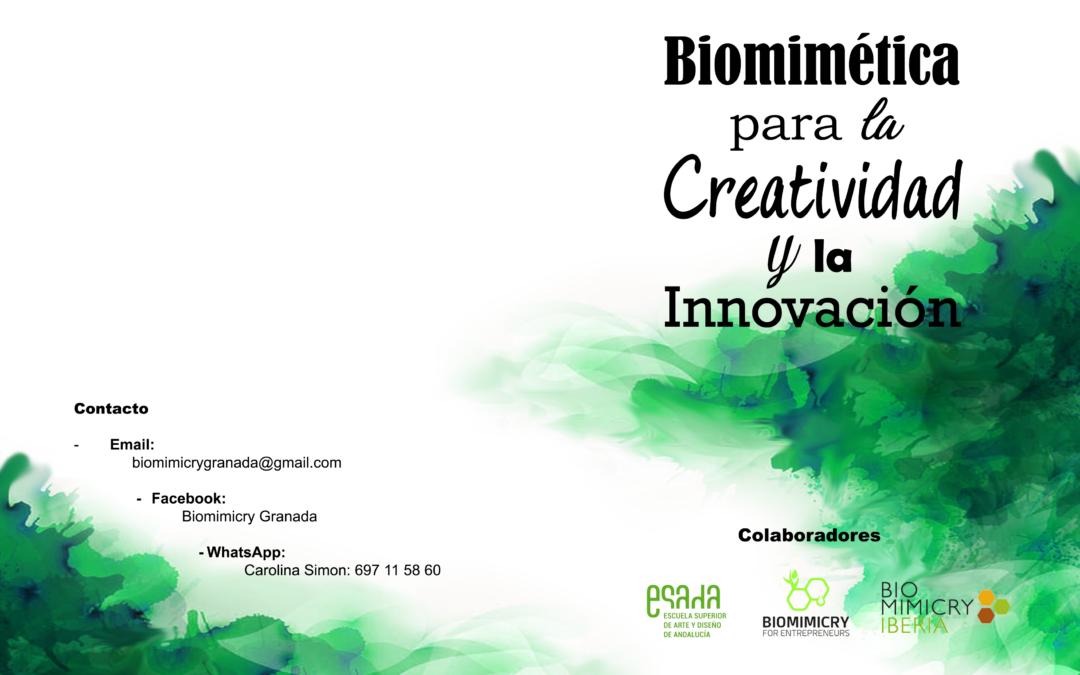 """Curso """"Biomímesis para la Creatividad y la Innovación"""""""