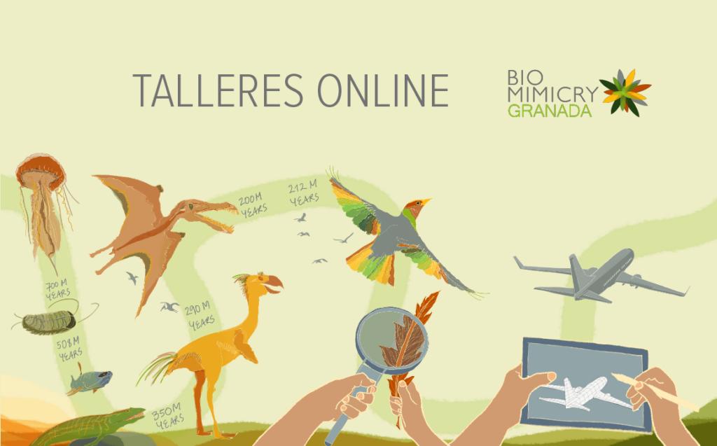 Talleres online biomimesis biomimicry granada