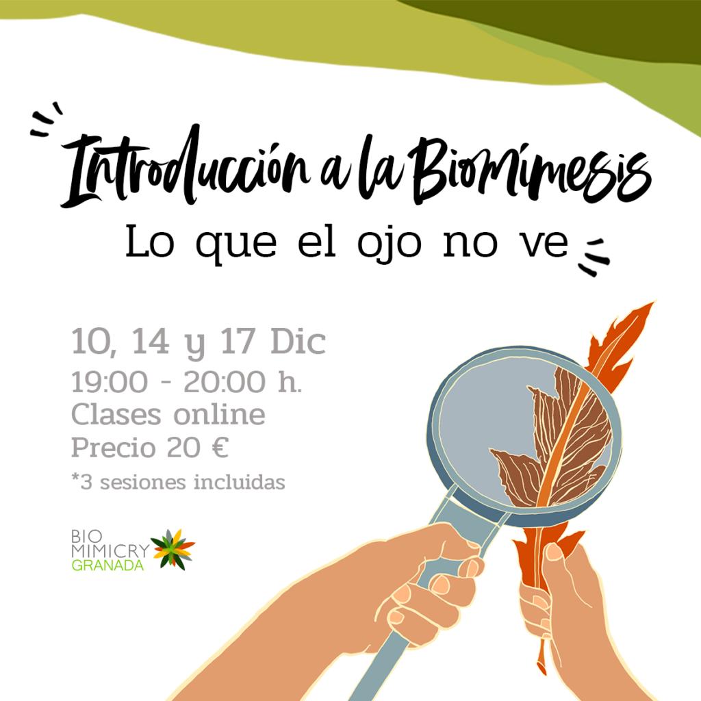 Introducción a la Biomímesis