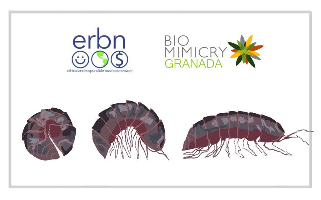 Tours Biomimicry Granada